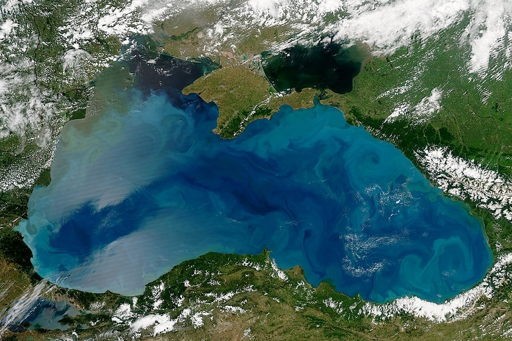 НАСА: цветение фитопланктона изменило цвет Черного моря