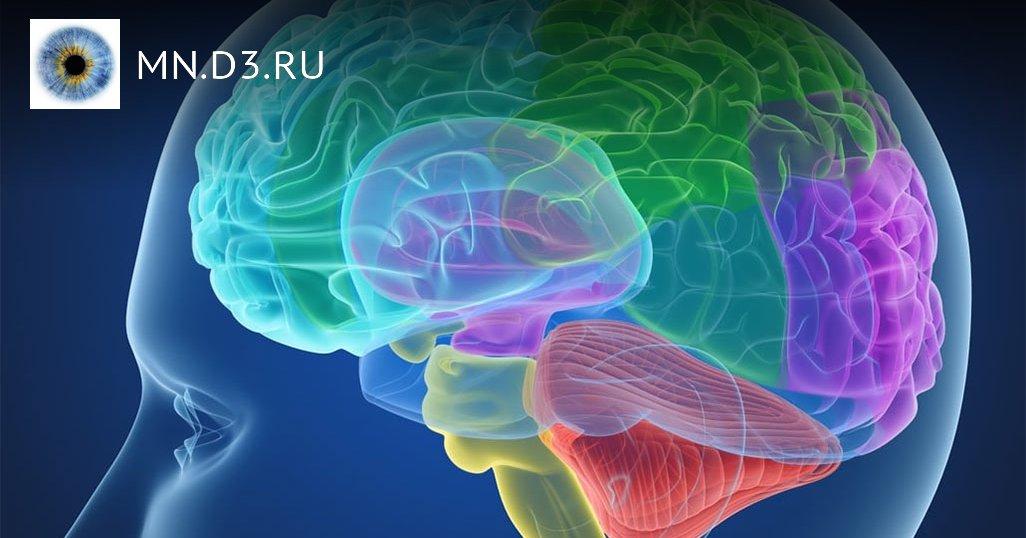 6 привычек здорового мозга