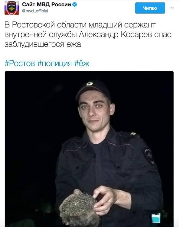 Путин попросит прокуратуру проверить ситуацию с правами геев в Чечне - Цензор.НЕТ 4152